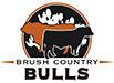 brush_country_logo