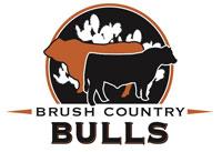 BrushCountryBullLogo